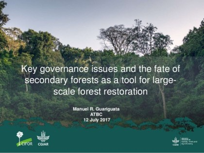 Key governance issues and the fate of secondary forests as a tool for large-scale forest restoration