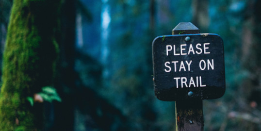 Stay on trail 5