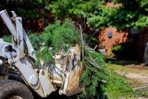 Pile tree branches in the city street removal of branch removal in tractor bucket.