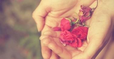 why we seek companionship