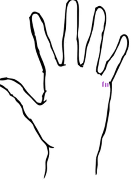Short Life Line Palm Reading
