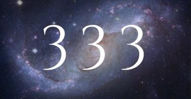 numerology 333