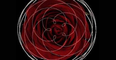 rose of venus astrology