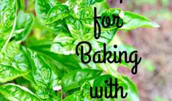 8 Tips for Baking with Essential Oils