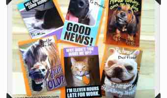 Hallmark FUNNY Pet Cards will Crack You up!! #FunnyPetCards