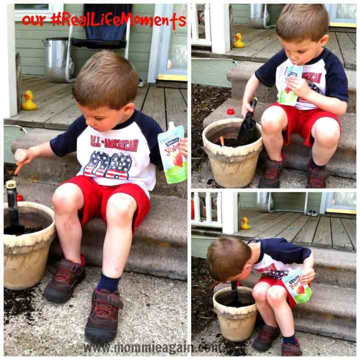 My Son's Go-To Snack Stonyfield Organic Yogurt Pouches