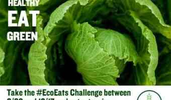 Eco Eats Challenge: Fill Up Your Reusable Water Bottle #EcoEats