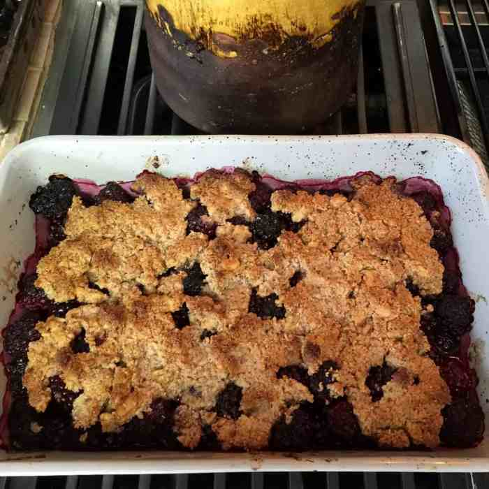 Easy Paleo Blackberry Crumble