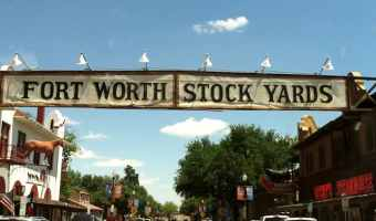 Something New at the Fort Worth Stock Yards