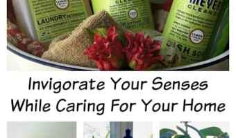 Invigorate Your Senses While Caring for Your Home