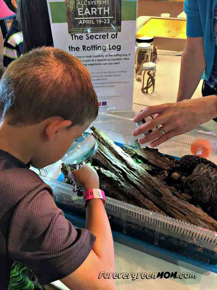 child_looking_through_magnifying glass at Fort Worth Museum of Science & History