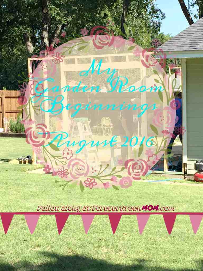 My Garden Room Beginnings August 2016