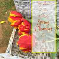 5 Tips to Make Spring Cleaning Fun & Easy