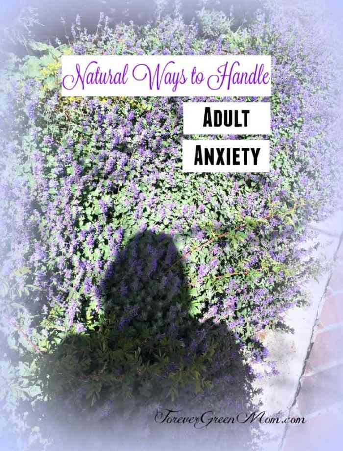 Natural Ways to Handle Adult Anxiety