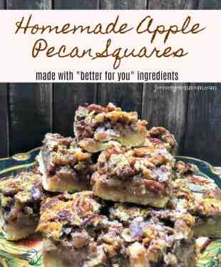 Homemade Apple Pecan Squares