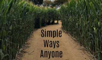 Simple Ways Anyone Can Go Green Right Now