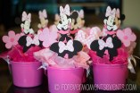 MinnieMouseWatermark_(3_of_17)