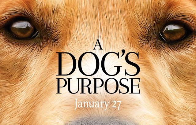 dogspurpose-1