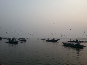 birds-boats-ganges-india-river-travel