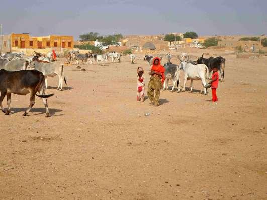 india-rajasthan-village