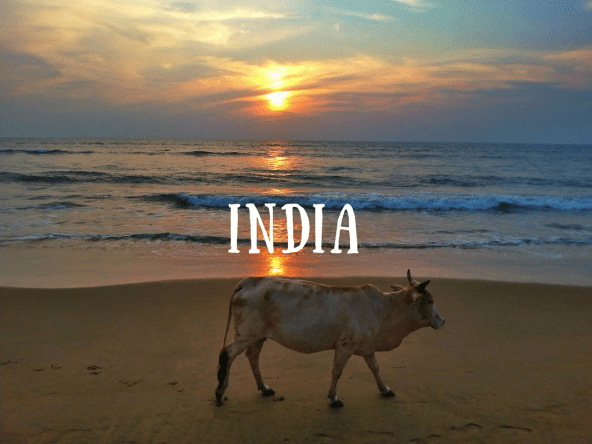 india-travel-articles-guides-posts