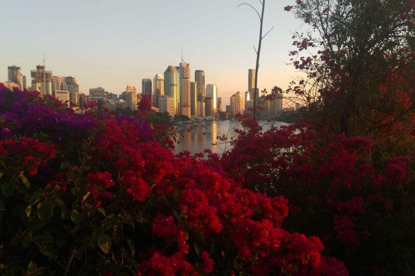 Things to do in Brisbane-australia