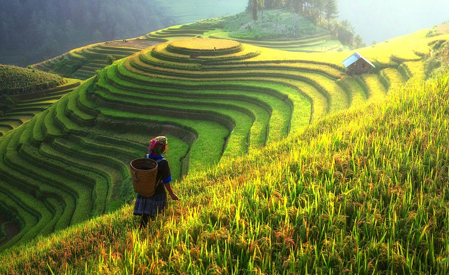 does travel broaden the mind