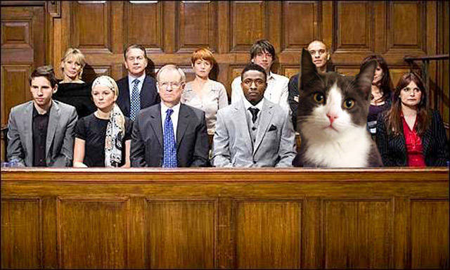 Image result for pic of jury duty