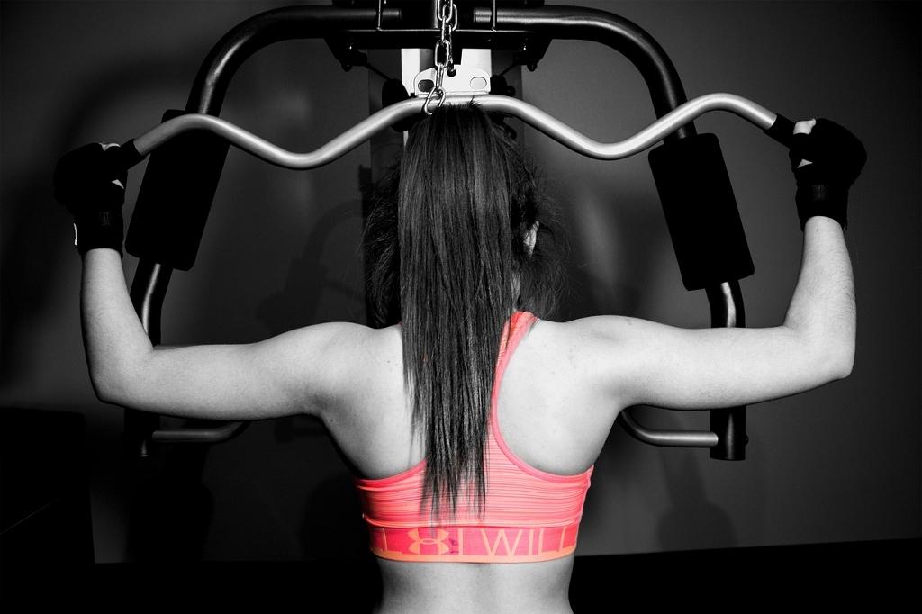 muskelaufbau-workout
