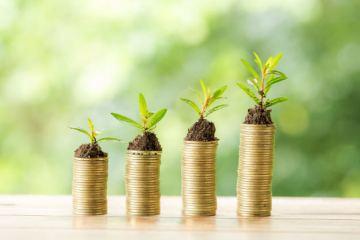 Inversiones en Materias Primas