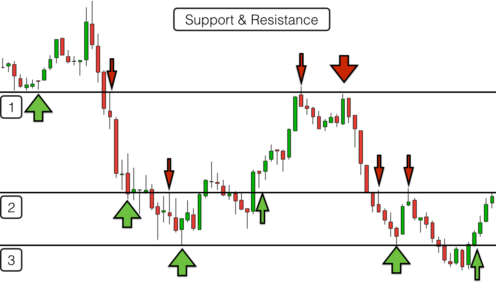 Hohw to use signals in forex