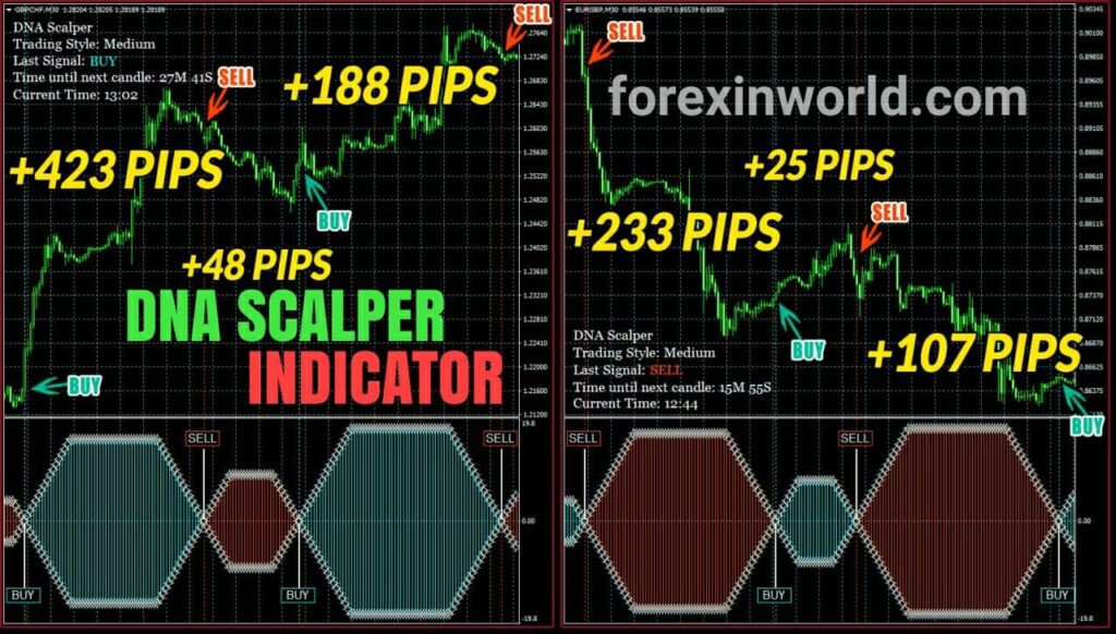 DNA-SCALPER-INDICATOR