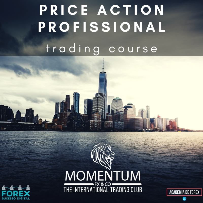 LOGO PRICE ACTION PROFISSIONAL TRADING COURSE