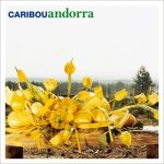 """""""Andorra"""" by Caribou"""