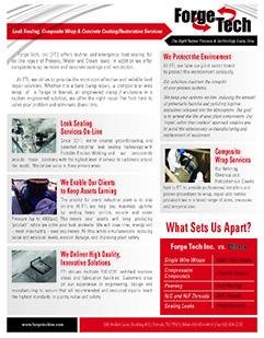 FTI Leaksealing Brochure 2-2014