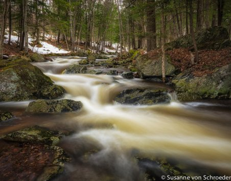 https://www.etsy.com/ca/listing/186362895/nature-photography-spring-creek-forest?