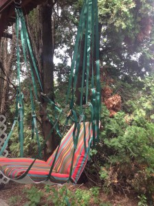 View of hammock from the side