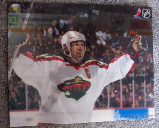 BRIAN ROLSTON MINNESOTA WILD 3-D HOLOGRAM PHOTO MEISNER ART NHL HOCKEY