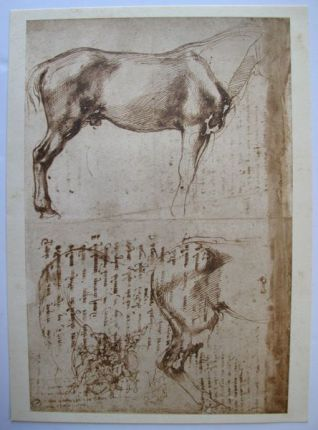 "MICHELANGELO 1970 Lithograph ""STUDIES OF HORSES"""