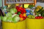 Dumpstered_vegetables-150×100