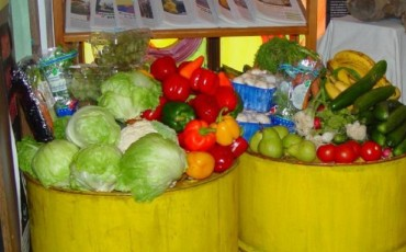 Dumpstered_vegetables-370×230