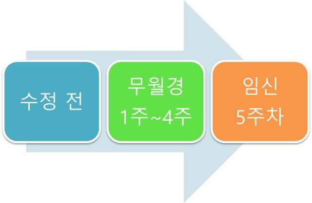 임신준비-출산 (1).jpg