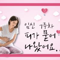 임신초기 출혈/임신초기 유산, 피가 묻어 나왔어요... 병원에 가봐야할까요? (임신 7주)