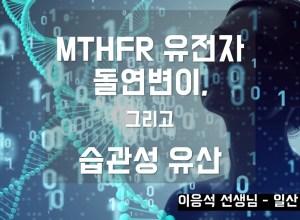 MTHFR 유전자 돌연변이, 그리고 습관성 유산