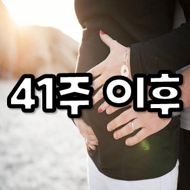 임신준비 그리고 출산까지 임신 41주