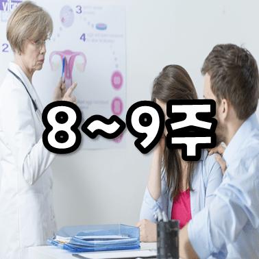 임신 8주 썸네일 임신과 몸의 변화