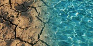 Η-Μεσόγειος-έγινε-η-πιο-αλμυρή-θάλασσα-στον-πλανήτη-–-Οι-μέδουσες-βρίσκονται-παντού