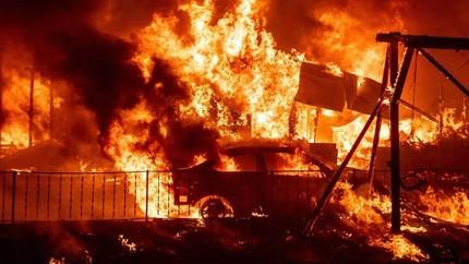 Χρυσοχοΐδης-–-Χαρδαλιάς:-«Μόλις-καούν-όλα-τα-δέντρα,-η-φωτιά-θα-σταματήσει»