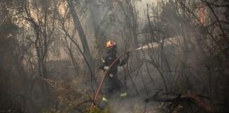 Φωτιά-στο-Κορωπί-–-Άμεση-επέμβαση-της-Πυροσβεστικής