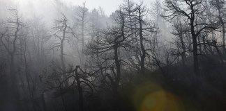 Μετά-τις-πυρκαγιές-έρχονται-οι-πλημμύρες